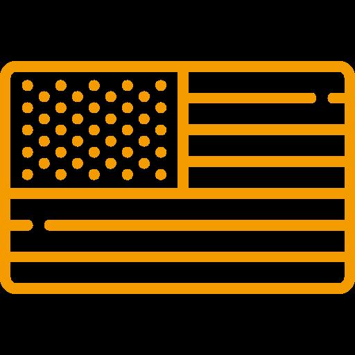RECENSIONI USA
